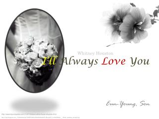 Whitney Houston  I'll  Always Love You