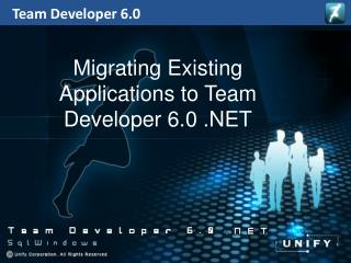 Team Developer 6.0