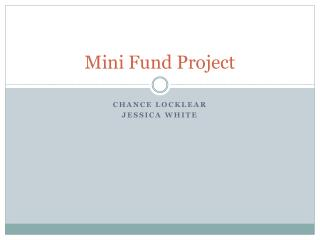 Mini Fund Project