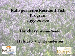 Kalispel Tribe Resident Fish Program  1995-001-00 Hatchery - Wayne Gould Habitat-  Michele Andersen