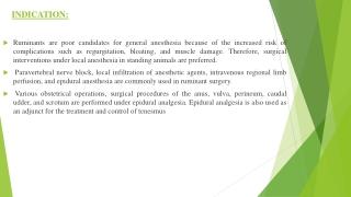 local anaesthetics and epidurals