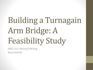 Building a  Turnagain  Arm Bridge: A Feasibility Study