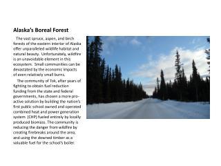 Alaska's Boreal Forest
