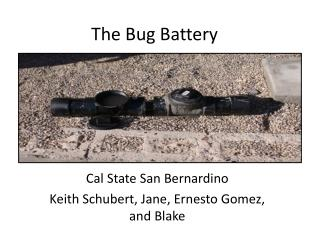 The Bug Battery