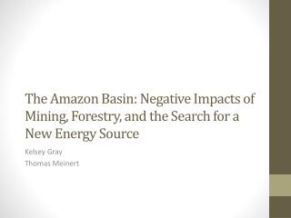 The Amazon Basin: Negative Impacts of Mining, Forestry, and the Search for a New Energy Source