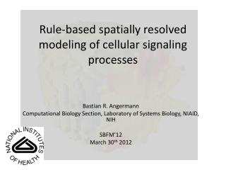 Rule-based spatially resolved modeling of cellular signaling processes