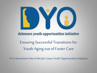 Ensuring Successful Transitions for Youth Aging out of Foster Care