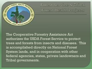 Forest Service & Tribal  Forest Health Projects
