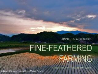 CHAPTER  22   AGRICULTURE FINE-FEATHERED FARMING