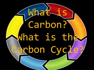 What is Carbon?  What is the Carbon Cycle?