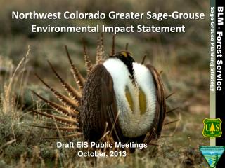 Northwest Colorado Greater Sage-Grouse Environmental Impact Statement
