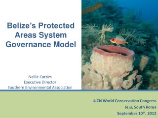 Belize's Protected Areas System  Governance Model