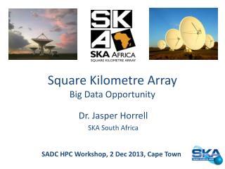Square Kilometre Array Big Data  Opportunity
