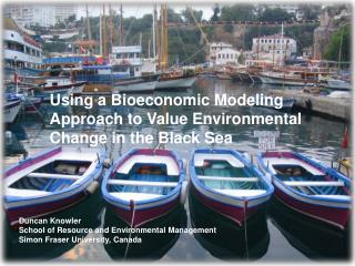 Using a Bioeconomic Modeling Approach to Value Environmental Change in the Black Sea