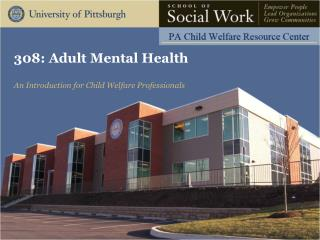 308: Adult Mental Health