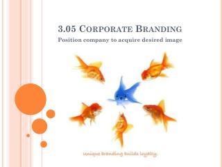 3.05  Corporate Branding