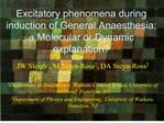 excitatory phenomena during induction of general anaesthesia: a molecular or dynamic explanation