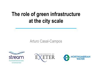 The role of green infrastructure  at the city scale