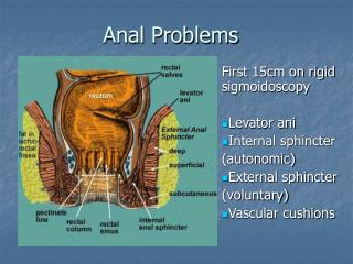 anal problems