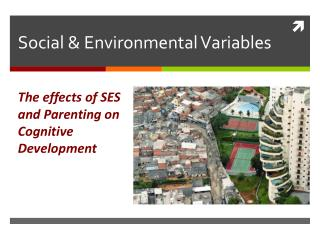 Social & Environmental Variables