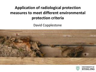 Application of radiological protection measures to meet different environmental protection  criteria
