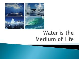 Water is the  Medium of Life