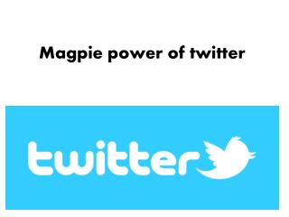 Magpie power of twitter