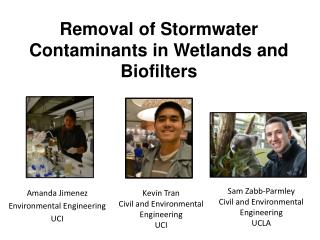 Removal of  Stormwater Contaminants in Wetlands and Biofilters