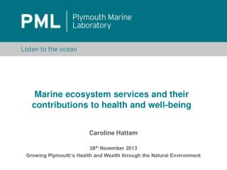 Marine ecosystem services and their contributions to health and well-being