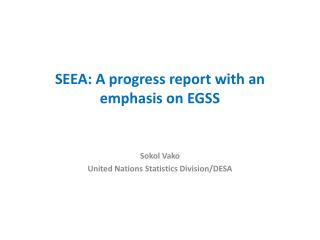 SEEA: A progress report with an emphasis on EGSS
