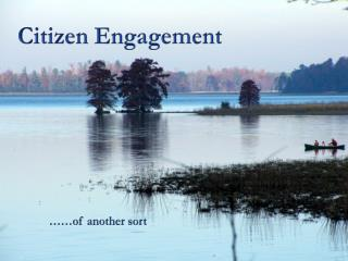 Citizen Engagement