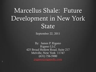 Marcellus Shale:  Future Development in New York State