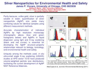 Silver Nanoparticles for Environmental Health and  Safety