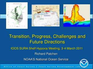 Transition, Progress, Challenges and Future Directions