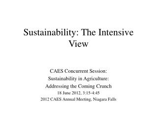 Sustainability: The Intensive View