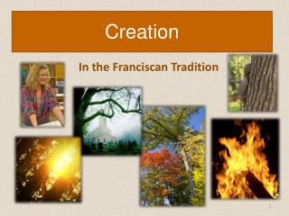 In the Franciscan Tradition
