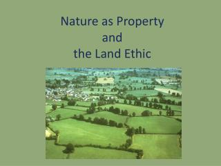 Nature as Property  and  the Land Ethic
