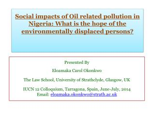 Social impacts of Oil related pollution in Nigeria: What is the hope of the environmentally displaced persons?