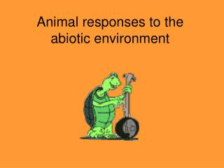 Animal responses to the abiotic environment