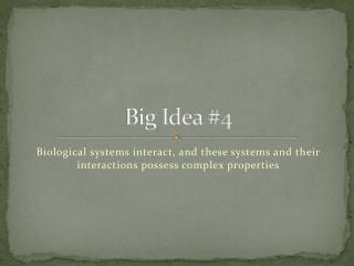 Big Idea #4