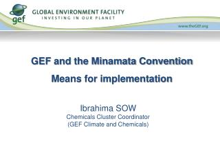 GEF and the Minamata Convention Means for implementation
