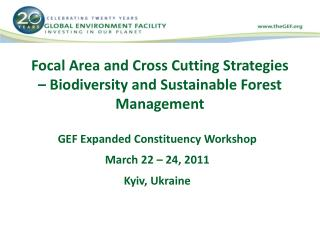 Focal Area and Cross Cutting Strategies – Biodiversity and Sustainable Forest Management