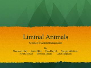 Liminal Animals