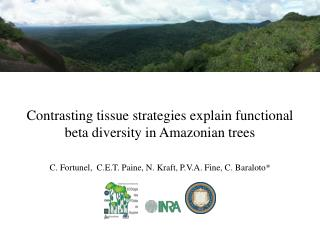 Contrasting  tissue  strategies explain functional beta  diversity  in  Amazonian trees