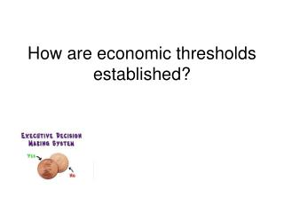 How  are economic thresholds established ?