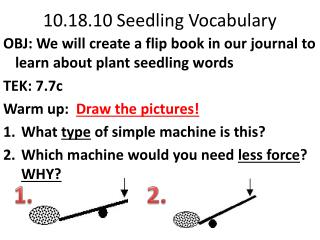 10.18.10 Seedling Vocabulary