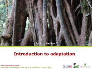 Introduction to adaptation