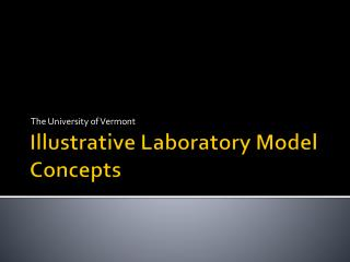 Illustrative Laboratory Model Concepts
