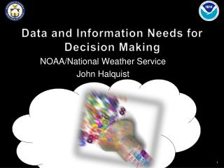 Data and Information Needs for Decision Making