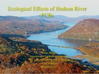 Ecological Effects of Hudson River PCBs